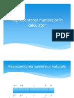 a Numerelor in Tehnica de Calcul