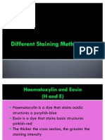 Different Staining Methods