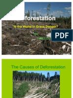 deforestationpowerpoint1-1223304643711663-9
