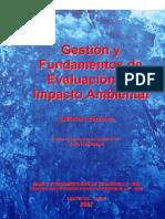 Gestion y Fundamentos de EIA 2007