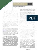 Relatório_27Fev2012