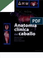 Anatomía Clinica del Caballo