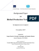 Background Paper Biofuels CEE UNIDO