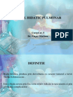 Chistul Hidatic Pulmonar. Dr. Mariana Ungur