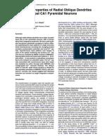 Integrative Properties of Radial Oblique Dendrites