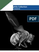 VWR Drosophila Brochure