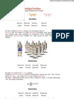 Dicionario Etimologico de a
