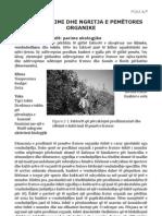 Planfikimi dhe Ngritja e Pemtores Organike
