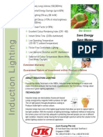 AREX Flyer for Induction Lighting 2011