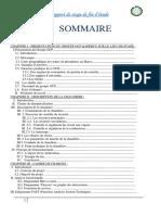 raport chaudiere45