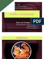 fisiopatologia_ferida_cicatrizacao