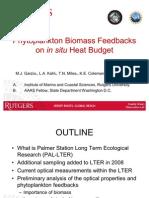 Phytoplankton Biomass Feedbacks on in situ Heat Budget