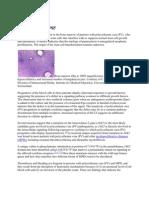 Patofisiologi Polisitemia Vera