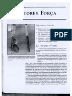 Cap. 2 - VETORES FORÇA