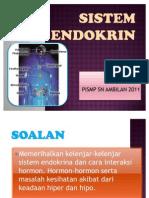 Sistem Endokrin - Yii Chin Siew