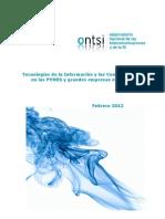 Tecnologías de la Información y las Comunicaciones en las PYMES y grandes empresas españolas (ONTSI) -Feb12