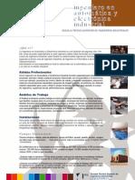 Ingeniero_en_Automática_y_Electónica_Industrial