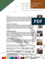 Ingeniero_Técnico_en_Informática_de_Gestión