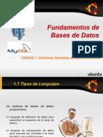 1.7 tipos de lenguajes