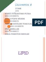 Fungsi Lipid Kelompok 8