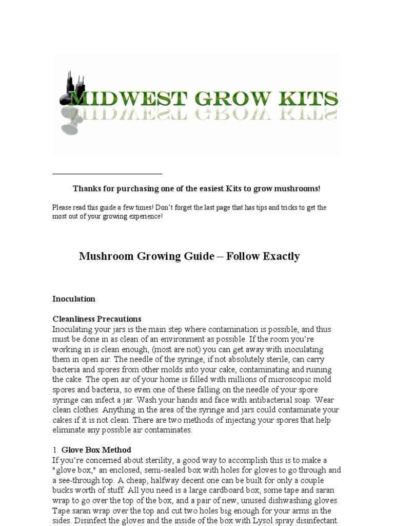 MushroomGrowGuide-MGK | Mushroom | Syringe