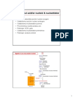C24 Catabolismul nucleotidelor