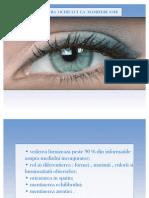 Globul Ocular Proiect Final