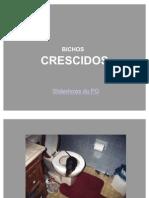 BICHOS CRESCIDOS