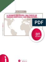 La_biomasa_en_Espana-Una_fuente_de_energia_renovable_de_gran_futuro