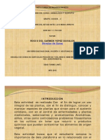 Diapositiva  de alelopatia