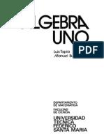 Apunte USM - Álgebra Uno (Tapia)