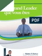 eBook Grand Leader