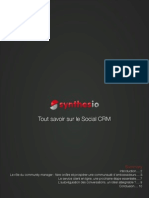 Dzn Synthesio Social Crm Made Easy Fr Whp