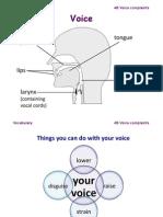 Voice Scribd