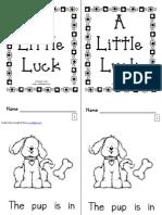 A Little Luck Book