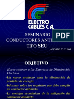 Cable Anti Hurto Seminario
