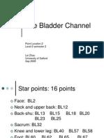 2-The Bladder Channel