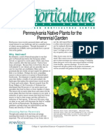 Pennsylvania Native Plants for the Perennial Garden