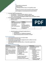 Zusammenfassung für Sozi KA (Gemeinden, Kommunen, Wahl ...)