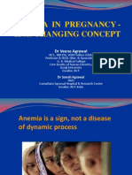 Anemia Pregnancy (3)