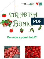 Pre Zen Tare Gradina Bunicii Team Work - Gradina Botanica Bucuresti