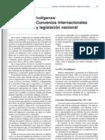 Díaz Garaycoa - 2002 - Indígenas Convenios internacionales y legislación
