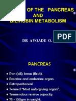 Anatomy of the Pancreas and Bilirubin Metabolism