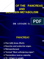 Anatomy of the Pancreas and Bilirubin Metabolism