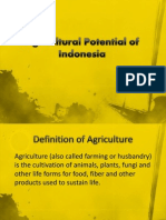 Agricultural Potential of Indonesia