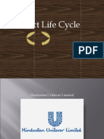 Product Life Cycle_ IIPS