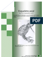 Esqueleto Axial - Prof. Me. Leandro Nobeschi