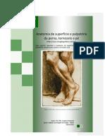 Anatomia de superfície e palpatória da perna, tornozelo e pe - Prof. Me. Leandro Nobeschi