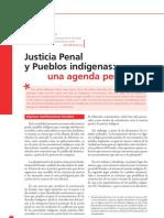 Ramírez - 2007 - Justicia penal y pueblos indígenas una agenda pen
