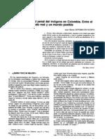 Sotomayor Acosta - 1996 - La responsabilidad penal del indígena en Colombia.